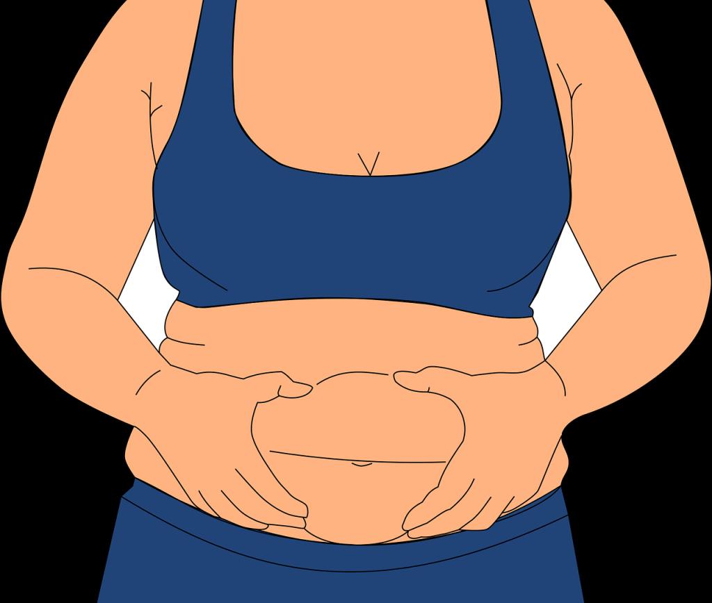 obesity 3114559 1280